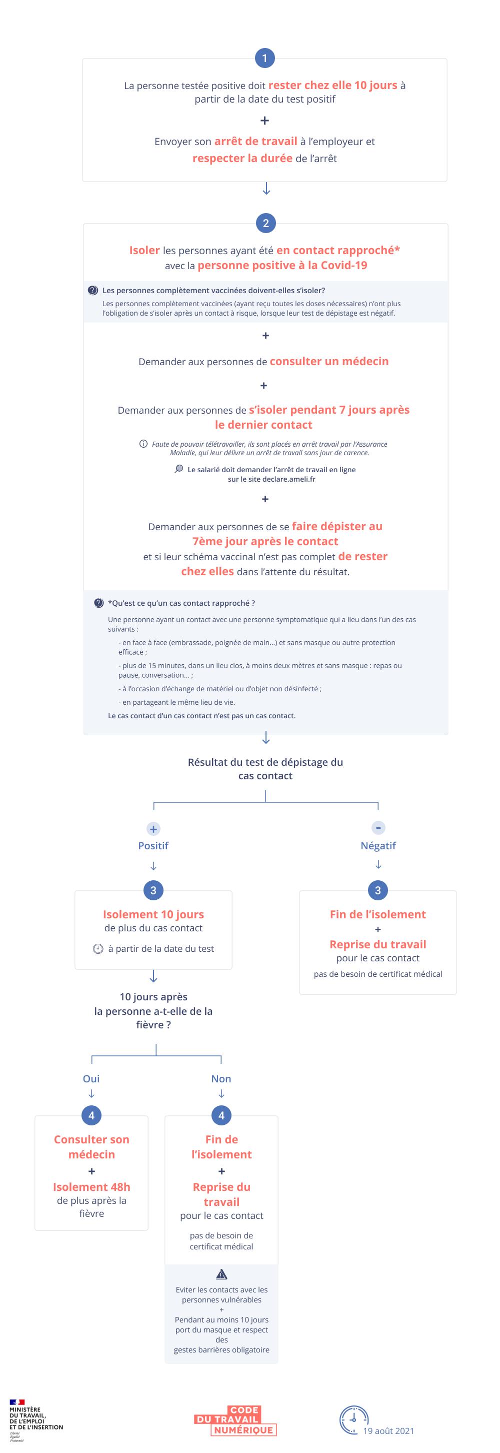 Infographie schématisant la procédure à suivre en cas de cas positif dans l'entreprise. Une version textuelle est disponible en dessous.